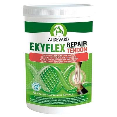 EKYFLEX TENDON REPAIR 600 GRS.