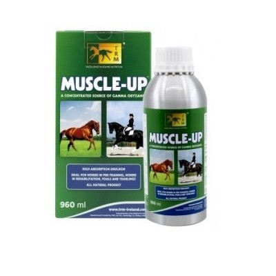 MUSCLE UP TRM 960 ML.
